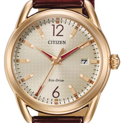 Citizen Eco-Drive LTR FE6083-05P