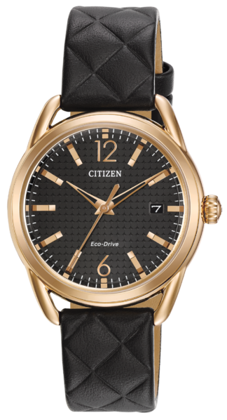 Citizen Eco-Drive LTR FE6083-13E