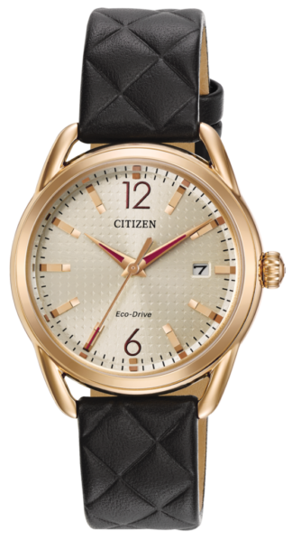 Citizen Eco-Drive LTR FE6083-13P
