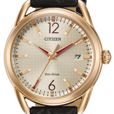 Citizen Eco-Drive LTR FE6083-13P